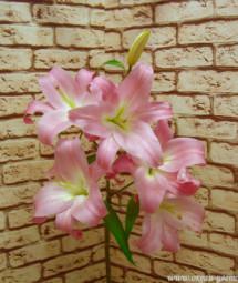 Ветка лилии розовая Воронеж