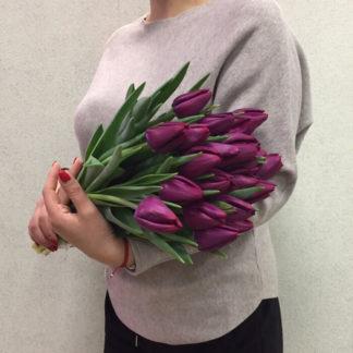 Фиолетовые тюльпаны Воронеж