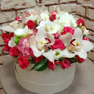 Орхидеи в коробке Воронеж