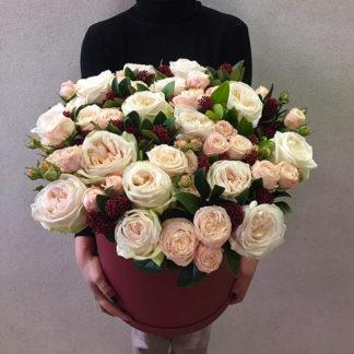Пионовидные розы скимия в коробке Воронеж