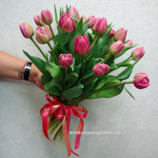 Букет пионовидных тюльпанов 25 шт Воронеж
