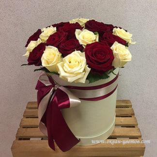 Красные белые розы в коробке 25 шт Воронеж