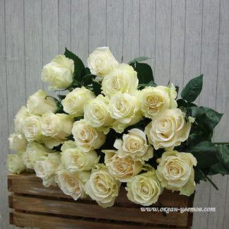 Букет белых роз Мондиаль 19 шт Воронеж