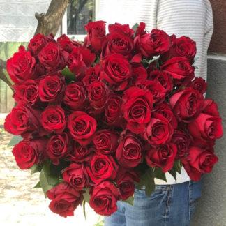 Букет бордовых роз Блэк Мэджик 35 шт 2