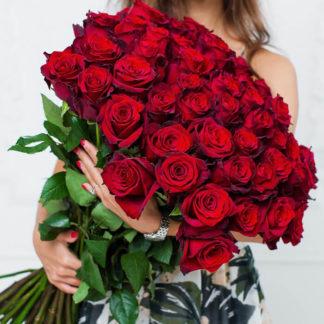 Букет бордовых роз Блэк Мэджик 51 шт