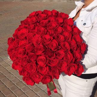 Букет из красных роз Фридом 35 шт Воронеж