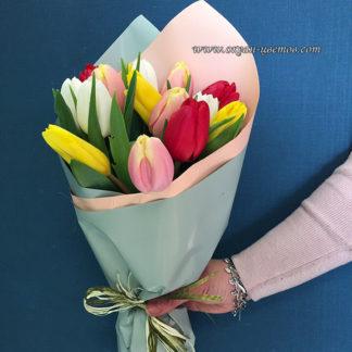Микс тюльпанов 15 шт
