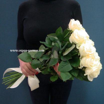Белая роза Доломити 15 шт Воронеж