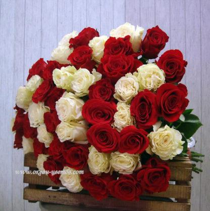 Букет красных и белых роз Эквадор Воронеж 2