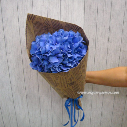 Комплимент из гортензии (синий)