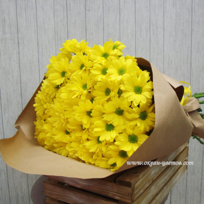 Ромашки желтые