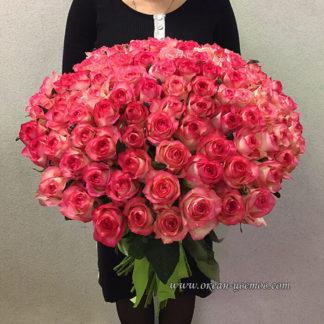 Розовая роза Джумилия 101 шт Воронеж