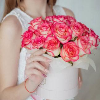 Розовые розы в коробке Джумилия 21 шт Воронеж
