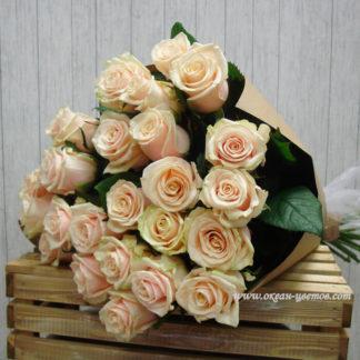 Букет кремовых роз Талея 19 шт Воронеж