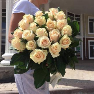 Букет кремовых роз Талея 21 шт Воронеж