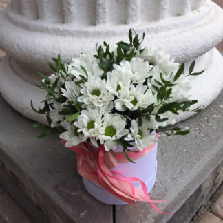 Белые ромашки хризантемы в коробке Воронеж