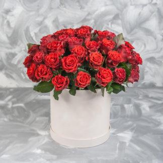 Алые розы в коробке Эль Торро Воронеж