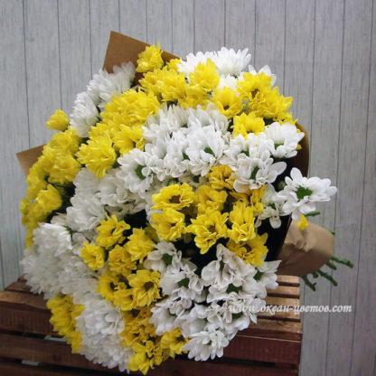 Букет из белых и желтых ромашек 25 шт хризантемы Воронеж