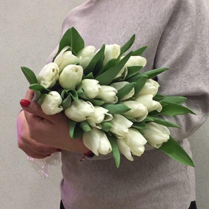 Букет белых тюльпанов 25 шт Воронеж 2