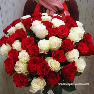Букет из красных белых роз 35 шт Воронеж