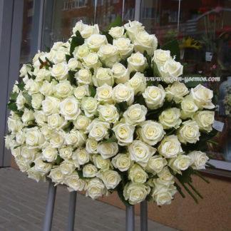 Букет белых роз Доломити 101 шт Воронеж