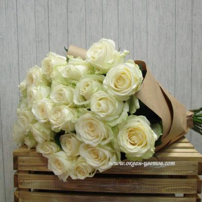 Букет белых роз Доломити 35 шт Воронеж 2