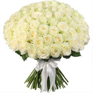 Букет белых роз Доломити 51 шт Воронеж 2