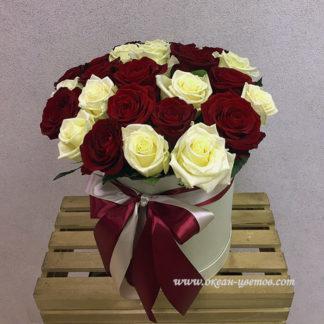 Красные белые розы в коробке 15 шт Воронеж
