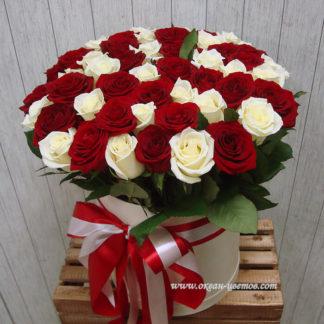 Красные белые розы в коробке Воронеж