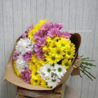 Букет из разноцветных ромашек хризантемы Воронеж