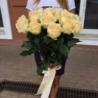 Букет кремовых роз Эквадор 101 шт Воронеж
