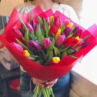 Букет из разноцветных тюльпанов 25 шт Воронеж