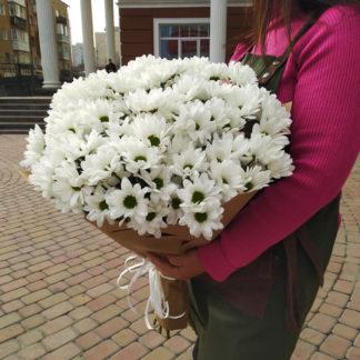 Букет из белых ромашек 15 Воронеж