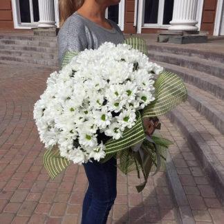 Букет из белых ромашек хризантемы Воронеж